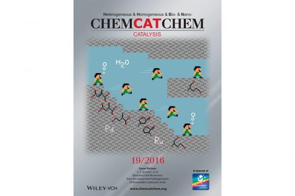Chem Cat Chem cover