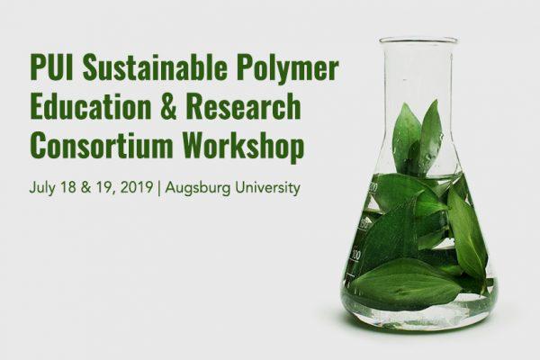 Primarily Undergraduate Institution (PUI) Workshop