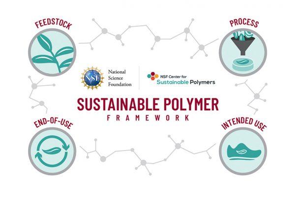 Sustainable Polymer Framework Developed